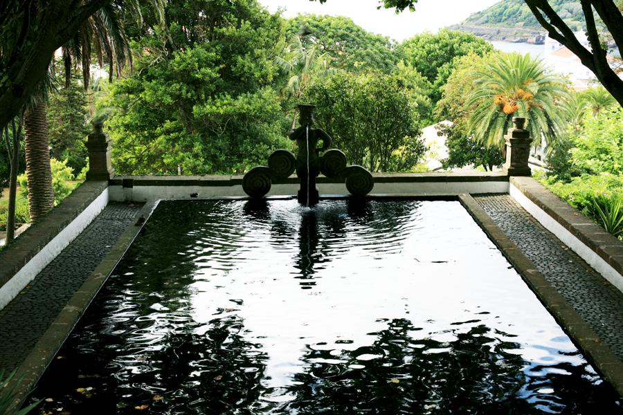 Curiosidades Botânicas | Visita orientada ao Jardim Duque da Terceira