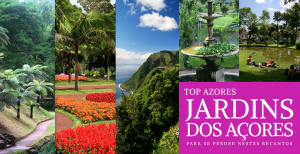 12 Jardins dos Açores – Deixe-se perder nos seus recantos – Top Azores
