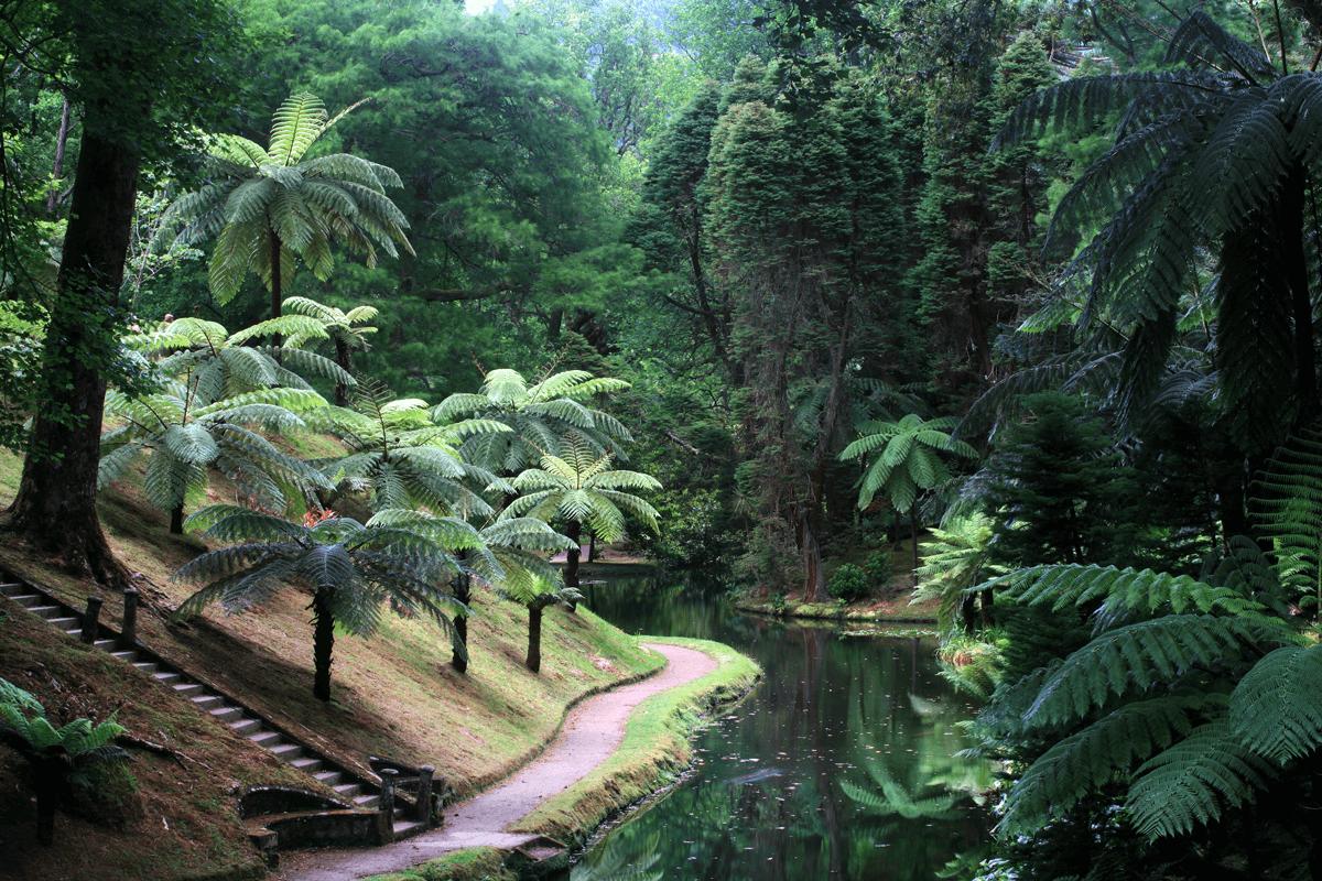 Ciência Viva no Parque Terra Nostra