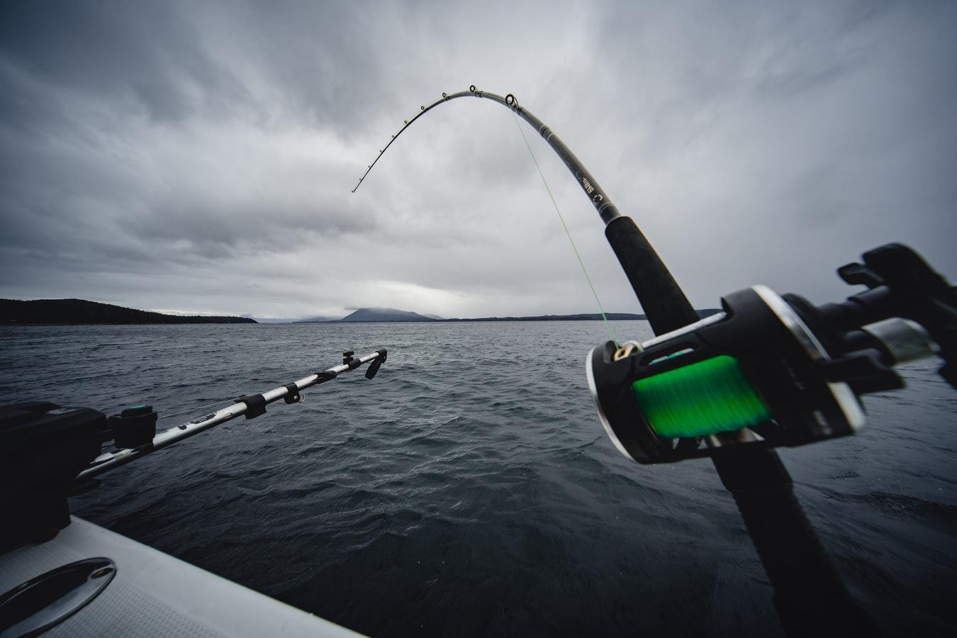 Convívio de pesca desportiva embarcada