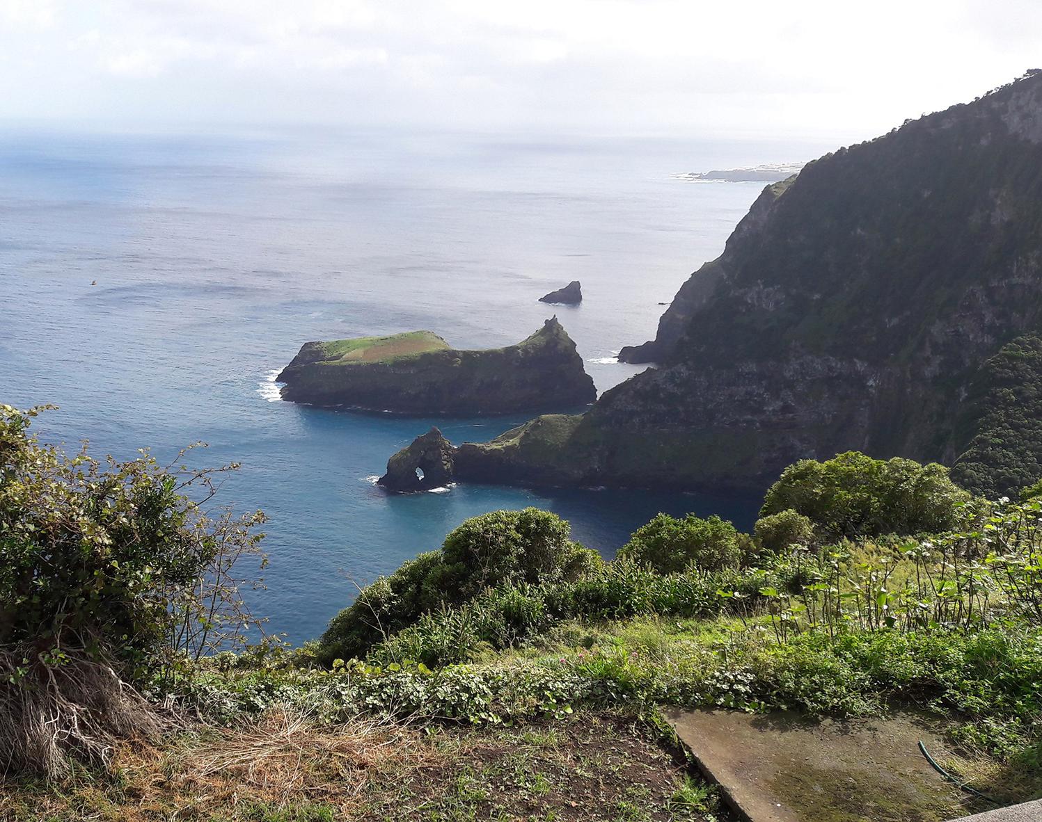 Cedros – Ponta Ruiva: A Humanidade e a Biosfera