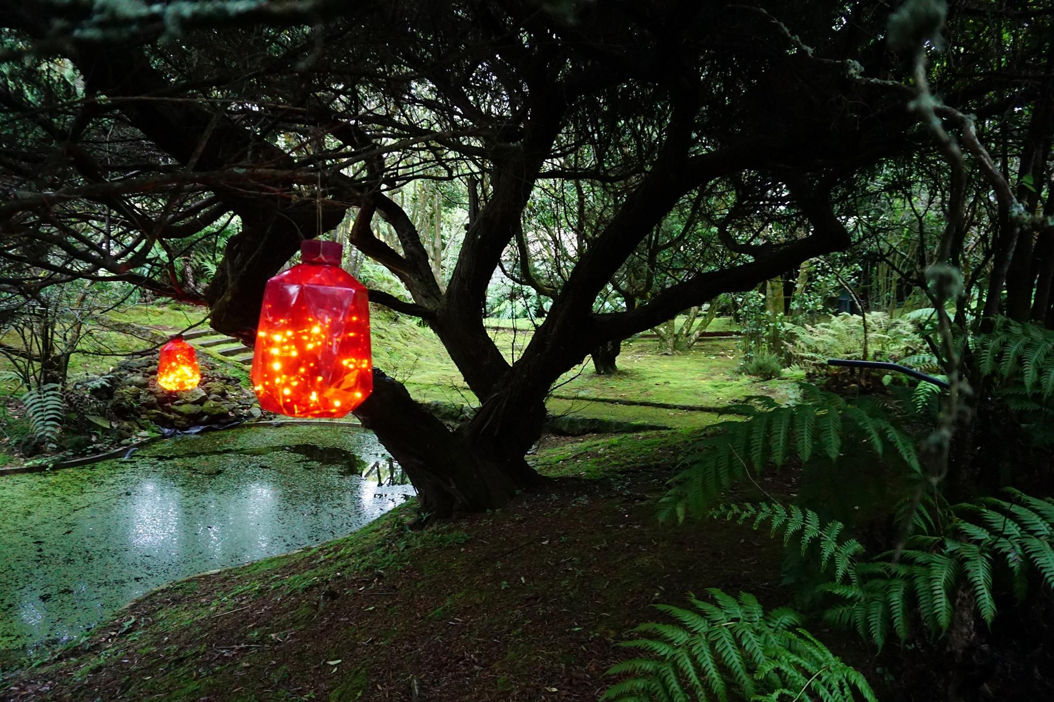 Natal Encantado no Jardim Botânico do Faial