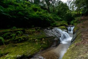PN Terceira – Uma aventura na ribeira