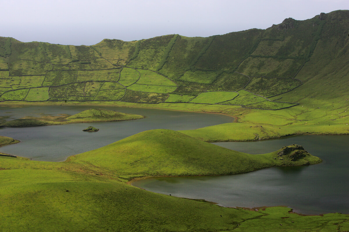 Read more about the article I Jornadas Ambientais da Ilha do Corvo