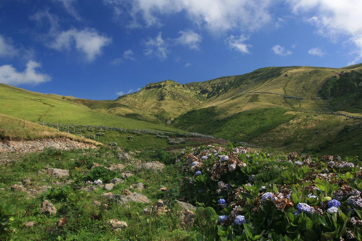 Morro Alto. As 13 Zonas Húmidas dos Açores