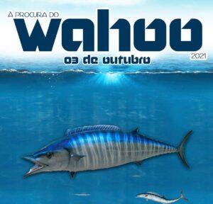 Prova de Pesca de Corrico À Procura de Wahoo