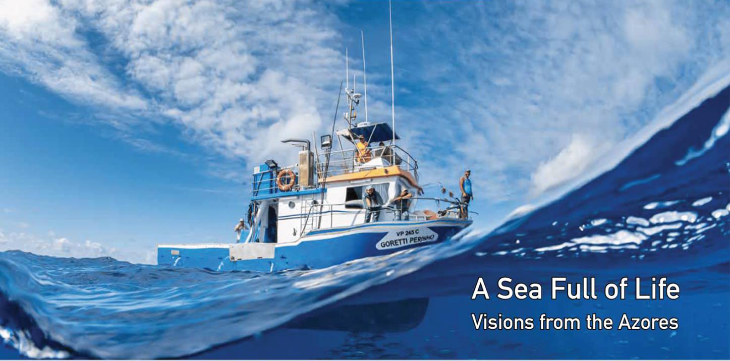 """Read more about the article Workshop Partilhar """"Visões do Mar"""""""